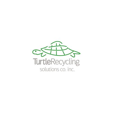 turtle - logo