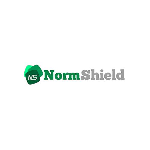norm - logo